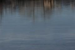 Mac on ice_ (Rocky Pix) Tags: park county winter sky lake ice water clouds river walking rockies colorado december exercise weekend longmont g boulder health shade bleak nikkor michel pastoral dawson f28 vr mcintosh cottonwoods monopod telezoom stvrain 1250thsec basinrockypixrockymountainpixw kiteleyf16 mcintoshlakepark mcintoshlakelooptrail 140mm70200mm maconice
