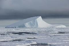 2_Iceberg (Sapienza Universit di Roma_Archivio fotografico) Tags: atmosfera ricerca cnr monitoraggio missione antartide spettrometro smfnsapienza marcodepetris unimilanobicocca uniromatorvergata cnrbologna physsapienza ricercasapienza