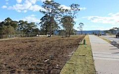 Lot 234 Tramway Drive, West Wallsend NSW