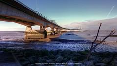 Second Severn Crossing (AreKev) Tags: secondseverncrossing severnbeach bridge riversevern southgloucestershire gloucestershire england ailgroesfanhafren m4 motorway severn severnestuary uk hdr photomatixpro sonyxperiaz3 sony xperia z3 mobilephone mobile phone tonemapped