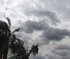 Cloudy day - HDR (Khaled M. K. HEGAZY) Tags: sky cloud tree nature club clouds river nikon cloudy yacht outdoor egypt palm nile cairo coolpix hdr maadi    p520