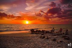 sunset 1 (markmartucciphoto) Tags: travel sunset beach animals florida gator wildlife everglades naples markmartucciphotography