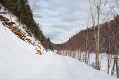 Winter road (odziuba) Tags: winter plant canada nature water forest river landscape seasons quebec hiver rivire qubec paysage wald herb fort saisons fleuve      zoofari vgtal langegardien   parcsnationauxduqubec   parcsqubec   qubecsnationalparks  nationalparksofcanadainquebec zoofariqubec