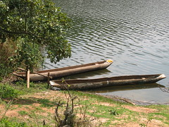 Canoes on Lake Bunyonyi