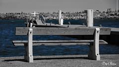 the bench by the sea - le banc devant la mer (png nexus) Tags: bw pierre nb bleu desaturation