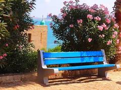 Jaffa (Yafo), Israel - more scenes (2) (jackfre2) Tags: israel telaviv jaffa yafo alleys streetlets cafs ateliers shops stairs jerusalemstone flowers mosque sea bench