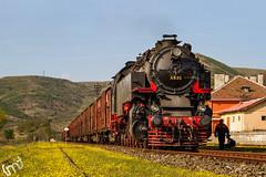 IMG_6012 (feverpictures) Tags: steam loco retro train bulgaria bdz cargo