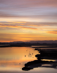 veldrif winter6 (WITHIN the FRAME Photography(5 Million views tha) Tags: sunrise river estuary lowlight westcoast southafrica reflections clouds sunlight travels tourism fuji xt1