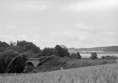 Ancient railway (Nicolas -) Tags: ilford fp4 lc29 rapidfixer bridge pont railway old field champ ancien chemindefer landscape paysage nicolasthomas yvelines france ecquevilly