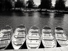 Keepin' afloat (jenkos1980) Tags: stratforduponavon boats river blackandwhite riveravon rowingboat