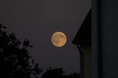 LUNE (Thomas Rudi) Tags: moon night orange lune nuit luxembourg