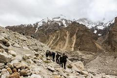 Paiju to Khorbotshe (Muhammad Hassan Jan Yousafzai) Tags: khyber kmc k2 karakorams karakoram skardu askole paiju jhula khorbotse baltoro baltistan pakistan glaciers 3rd pole