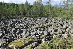 Fields of boulders near Kemijarvi Finland (David Russell UK) Tags: bolder bolders boulder boulders rock geological ice age formation landscape view scene scenery lapland finland kemijarvi outdoor