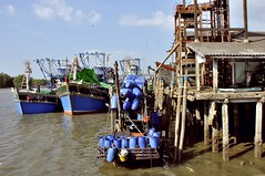 Ranong Fishing harbour, Kraburi river, Thailand. (Olivier Simard Photographie) Tags: thalande thailand ranong krabuririver pakchan port harbour chalutier trawler delta rivire river chaloemphrakiat andamasea kraisthmus ismedekra birmanie burma myanmar contrebande smuggling mangrove asie asia pirates piraterie piracy kra isthmedekra pninsulemalaise victoriapoint andamansea kawthaung kraburi thesabanmueang mueangranongdistrict mer dtroit sea strait tide bateau boat mare pcherie crie marchauxpoissons mareyeurs entrept quai fishery auction fishmarket fishmongers warehouse dock