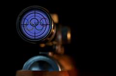 "Macro Mondays Summer Olympic Sports ""Shooting"" (Wim van Bezouw) Tags: macromondays summerolympicsports shoot shooting rifle object dof selectiveconceptualdof olympics sport gun"