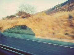 Dia Internacional de la Fotografa (mayavilla) Tags: diainternacionaldelafotografia foto fotografia sueo viajar flickr road coche auto sombra atardecer carretera viaje velocidad amotomarfotos 3 lasfotossonparami shadows car