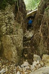 Creux du bois de Chataillon après l'orage dévastateur (francky25) Tags: creux du bois de chataillon après lorage dévastateur alaise franchecomté doubs