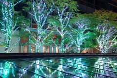 2014Tokyo Midtown Christmas Illumination 2014 (ELCAN KE-7A) Tags: christmas japan tokyo town pentax illumination  roppongi  mid  2014      k5s