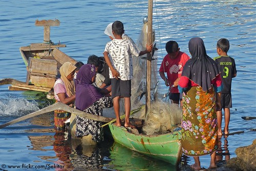 Busy with the morning catch at Pelabuhan, Baranusa, Pantar NTT Indonesia