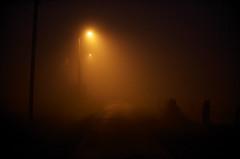 Brouillard (Samuel Raison) Tags: mist nikon loire campagne brouillard campagnedefrance nikond3 loire42 nikon2870200mmafsvr
