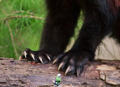 1475 (Jasper Kyodaina) Tags: man guy feet fetish giant foot paw nail claw squish sole crush giantess trample esmagar