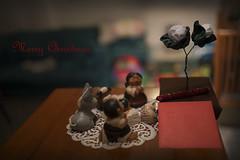 Merry Christmas (Fabio Greco) Tags: merrychristmas fabiogreco