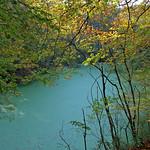 Herbstlicher Waldspaziergang (17) thumbnail