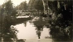 Parco del Castello di Miramare