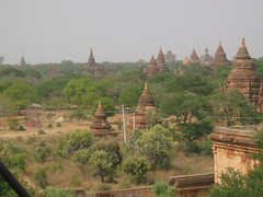 Many, Many Stupas of Bagan