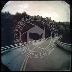 NORTHCAROLINA-259