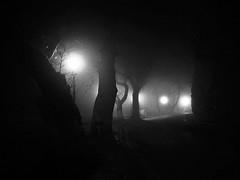 Shadows (PattyK.) Tags: winter blackandwhite fog night december nightlights shadows silhouettes greece griechenland whereilive ilovephotography  ioannina giannena epirus  coldnight