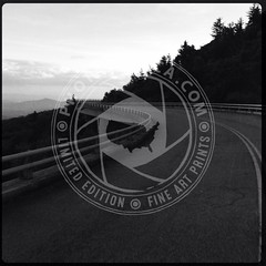 NORTHCAROLINA-262