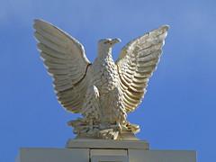 Douglas, AZ Leggett Building terra cotta eagle (army.arch) Tags: arizona cinema theater eagle architecturaldetail terracotta az douglas movietheater airdome