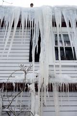 RSJohnson_150221_0007 (Robert S Johnson 375) Tags: winter ice ma icicles r2ny