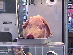 A Pigs Head