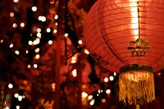 a glimpse of Lunar 2015 (hailin.elle) Tags: new red holiday festival canon lens 50mm bokeh year chinese chinesenewyear celebration event lantern lunar lunarnewyear  2015