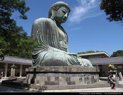 Daibutsu, Kamakura, Japan (JH_1982) Tags: statue japan bronze buddha kamakura great icon daibutsu  nippon japo kanagawa japon giappone  amida japn  kotokuin  kotoku     ktokuin   ktoku