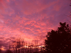 Changed To Pink! ('cosmicgirl1960') Tags: morning pink sky nature clouds sunrise silhouettes devon yabbadabbadoo