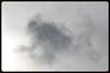 Monkey Cloud (Zelda Wynn) Tags: sky weather auckland artgalleryofnsw cloudscape troposphere monkeycloud inspiredbyalfredstieglitz zeldawynnphotography