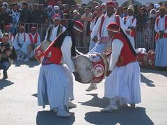 Drummers at Douz Sahara Festival