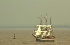 Kaskelot 14-03-2015 13-55-28.CR2 (Welsh Harlequin) Tags: ship tall buoyant kaskelot