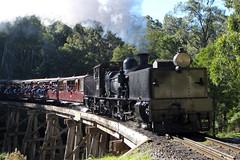 Puffing Billy Steam Train (AlfredSin) Tags: alfredsin mtdandenong canonef1740mml puffingbilly belgrave melbourne victoria 2016
