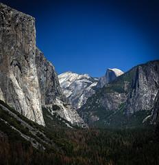 Yosemite Tunnel (D. Scott Taylor) Tags: travel yosemite california united states valley blue half dome el capitan trees nature landscape green