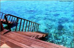"""Live in the sun shine.. (Lasitha Imali Gunarathne: """"Ayubowan Sri Lanka"""") Tags: maldives paradiseislandresortandspa watervilla beach sea corals clearwater maldivesheaven simplymaldives"""