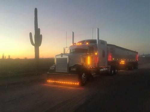 Plum Truckin