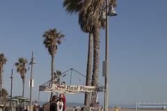 @IMG_4462 (bruce hull) Tags: sanfrancisco california aquarium coast highway chinatown pacific wharf whales coit emabacadero