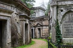 Welcome to the Mausoleum (Mark Seton) Tags: west mausoleum victorian london highgatecemetery highgatecemeterywest f64g78r3win