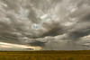 Kansas Storm (thefisch1) Tags: kansas storm thunder prairie turbulence turbulent interesting wind rain gusty cloud sky
