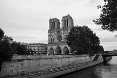 Notre Dame (Honey Bfly) Tags: nikond60 paris francia france notredame catedral bn blancoynegro blackwhite monocrome monocromo sena ro river
