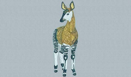 digitized #okapi - true flat rate embroidery digitizing - prices start at $5.99 per design. Email your artwork in pdf, jpg or png format to indiandigitizer@gmail.com. http://ift.tt/1LxKtC5 #FlatRateEmbroideryDigitizing #Indiandigitizer #embroiderydigitizi